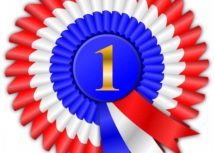 award-155595_960_720