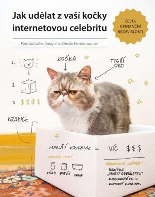 Jak udělat z vaší kočky internetovou celebritu