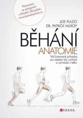 Běhání - anatomie
