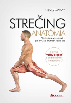 Strečing - anatómia