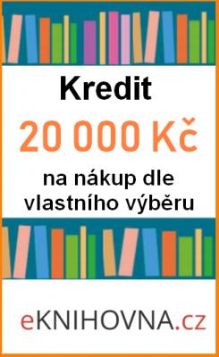 Kredit 20 000 Kč