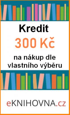 Kredit 300 Kč série č.3