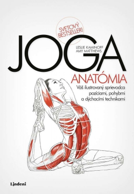 JOGA - anatómia