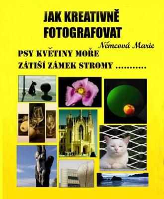 Jak kreativně fotografovat psy, květiny, moře, zátiší, zámek, stromy....
