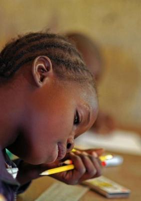 Vzdělávací systém v Africe