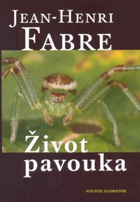 Život pavouka