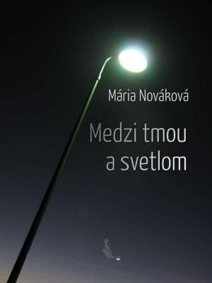 Medzi tmou a svetlom