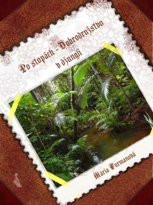 Po stopách – Dobrodružstvo v džungli