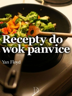 Recepty do wok panvice