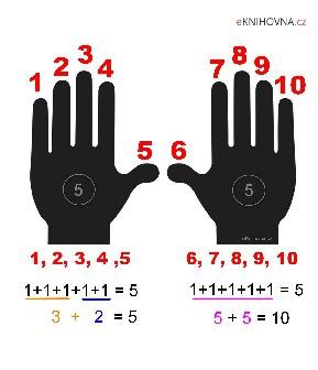 Sčítání na prstech 1 až 10, obrázek ruce